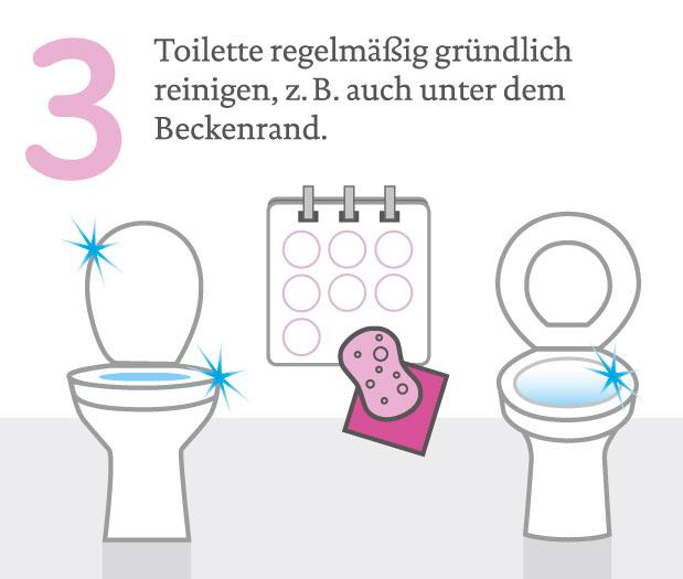 Toilette Richtig Reinigen wohnung küche bad und wc richtig putzen